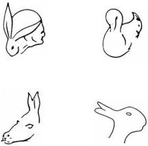 Figure 2. ambiguous imagery stimulus